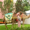 Moroccan Theme Party Ideas: Live Camels as Greeters