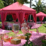 Hot Pink Princess Party